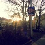 Elezioni Breslavia