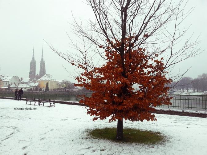 Breslavia, prima neve