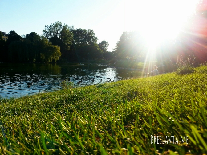 Il Parco Tołpy sotto casa