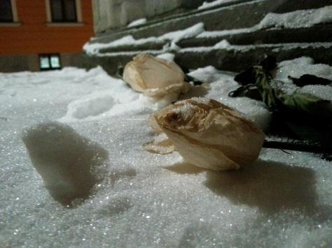 Inverno neve polonia